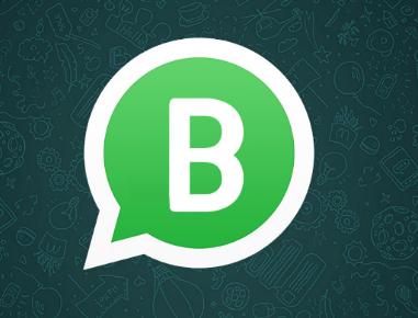 Whatsapp business: saiba tudo sobre a plataforma